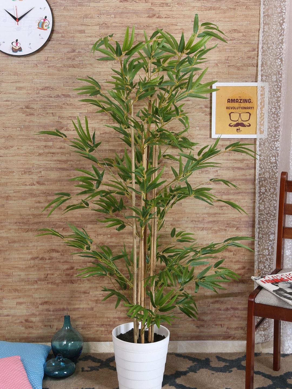 6f382d3d77607a Loom Tree - Buy Loom Tree online in India