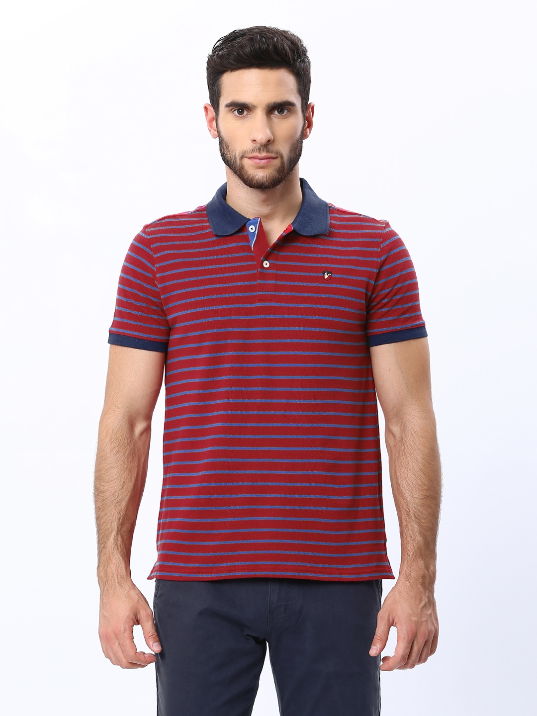 Myntra american swan men blue white striped polo t shirt for Red blue striped shirt