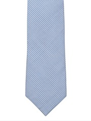The Tie Hub Blue & White Checked Tie