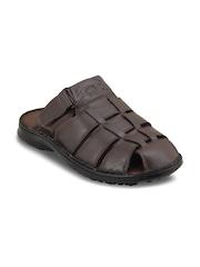 Ventoland Men Brown Leather Sandals