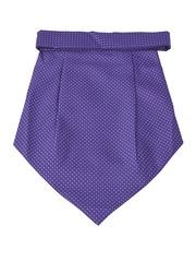 Alvaro Castagnino Blue Printed Cravat