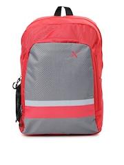 HRX by Hrithik Roshan Unisex Grey & Red Backpack