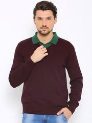 Indian Terrain Men Maroon Sweater