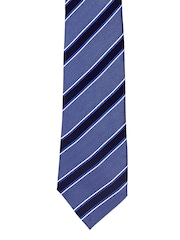 Tossido Blue Striped Tie