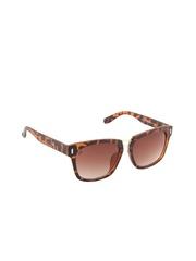 Funky Boys Unisex Wayfarer Sunglasses SOC-FB-3037-C4