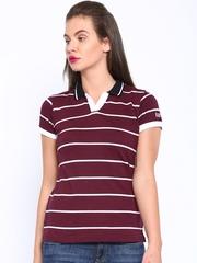 HARVARD Maroon Striped Polo T-shirt