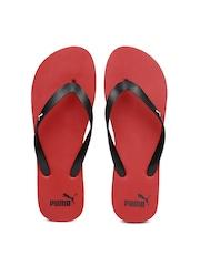 PUMA Men Black & Red Odius DP Flip-Flops