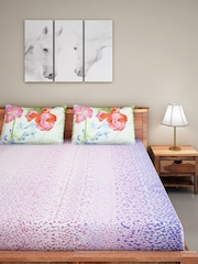 SPACES Pink & Blue Cotton 220 TC Double Bedsheet with 2 Pillow Covers