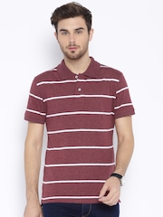 Fox Maroon Striped Polo T-shirt