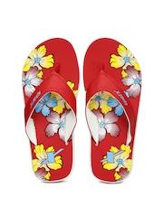 Sparx Women Red Floral Print Flip-Flops