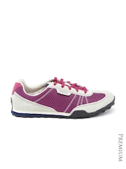 Timberland Women Magenta & Grey Greeley Suede Sneakers