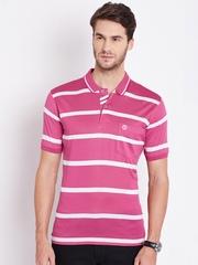 Duke Pink & White Striped Polo T-shirt
