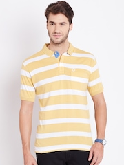 Duke Men Mustard Yellow Striped Polo T-shirt