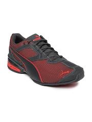PUMA Men Grey & Red Tazon 6 Running Shoes