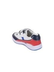 Lilliput Boys Navy & White Colourblocked Regular Sneakers