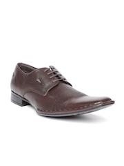 Lee Cooper Men Brown Genuine Leather Formal Shoes