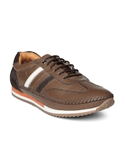 Buckaroo Men Brown Perforated Leather Casual Shoes