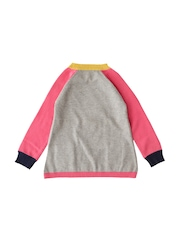 Weedots Girls Grey & Pink Colourblocked Sweater