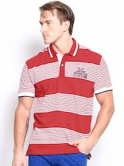 SCULLERS Men Red & White Striped Polo T-shirt