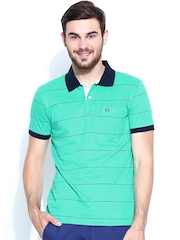 Arrow Sport Men Green & Navy Striped Polo T-shirt