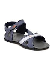 PUMA Men Blue & Grey Gadwall DP Sports Sandals