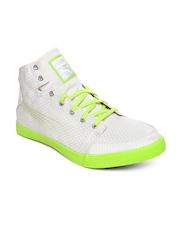 PUMA Unisex Beige Drongos DP Running Shoes