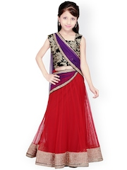 K&U Black & Red Embroidered Net Lehenga Choli with Dupatta