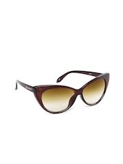 Allen Solly Women Cat Eye Sunglasses AS257 C2