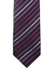 Alvaro Castagnino Purple & Black Striped Tie