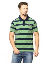 American Swan Men Navy & Green Striped Polo T-shirt