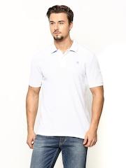 American Swan Men White Polo T-shirt