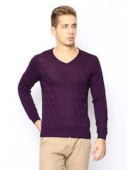 Arrow New York Men Purple Sweater