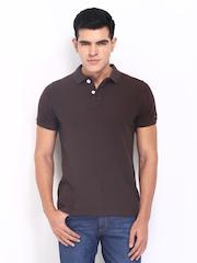 Basics Men Dark Brown Polo T-shirt