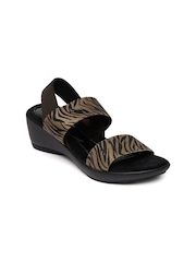 Catwalk Women Brown & Black Printed Sandals