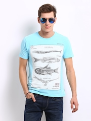Flying Machine Men Blue Printed T-shirt