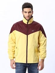 Men Yellow Jacket Fort Collins