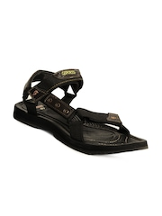 G Sports Men Brown Sandals