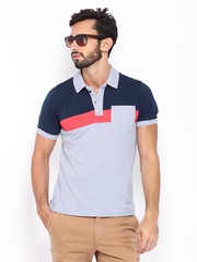 HRX Men Sky Blue & Navy Polo T-shirt