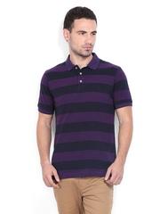 Indian Terrain Men Purple & Black Striped Polo T-shirt