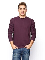 John Players Men Burgundy Sweatshirt