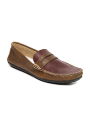 Knotty Derby Men Brown & Maroon Tom Loafers