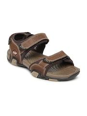 Lee Cooper Men Brown Leather Sports Sandals