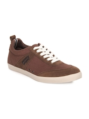 Levis Men Brown Casual Shoes