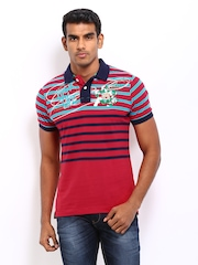 Probase Men Red & Blue Striped Polo T-shirt