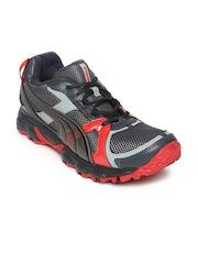 Puma Men Grey & Red Pumafox Running Shoes