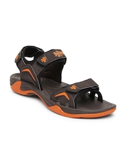 Roadster Men Brown Sports Sandals