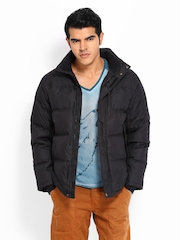 Timberland Men Black Padded Jacket