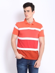 Wrangler Men Coral Orange & White Striped Polo T-shirt