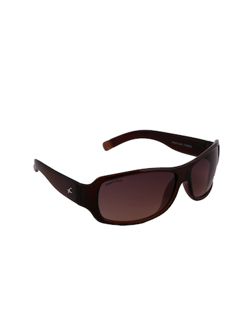 Fastrack Unisex Summer Brown Sunglasses