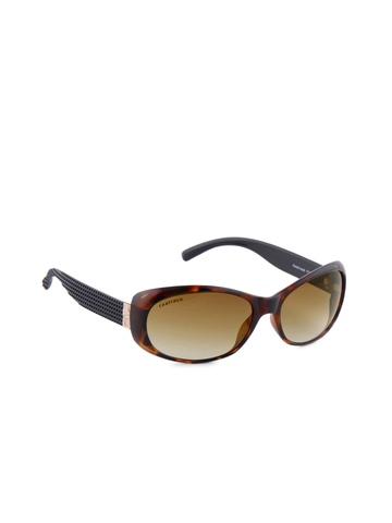 Fastrack Women Brown Sunglasses